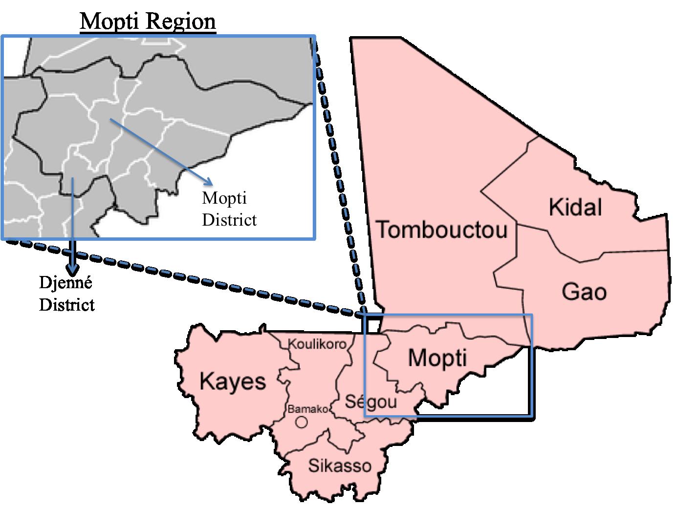 Image result for mopti region