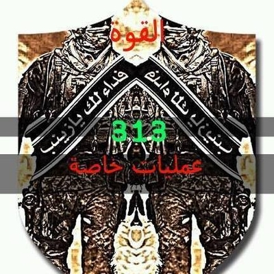 Image result for لواء 313