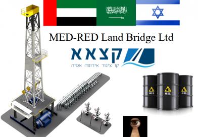 הסכמים בין ישראל למדינות ערב, איך הדברים נראים בעיני השכנים?