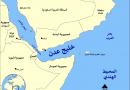 טהראן: סיכלנו מתקפה של פיראטים על מכלית נפט איראנית במפרץ עדן